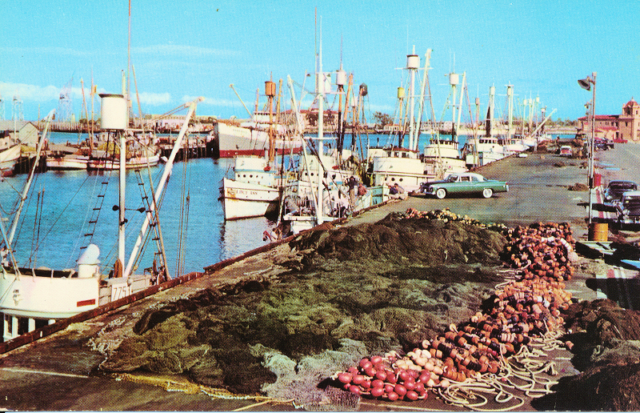 "The back of the card reads ""FISHERMAN'S WHARF, SAN PEDRO. Part o the Fishing Fleet that supplies the canneries of the San Pedro, Wilmington and Terminal Island Area. Los Angeles-Long Beach Harbor, California."